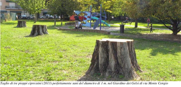 taglio_alberi_padova